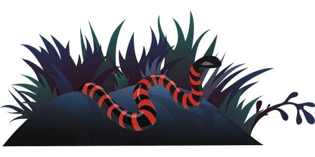 a red color snake siting on a land