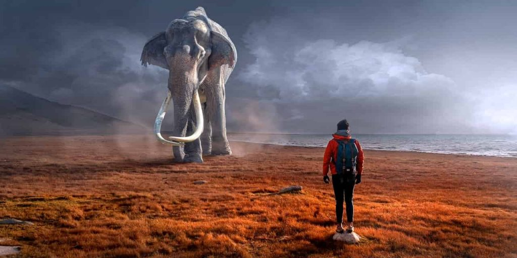 elephant in dream, elephant dream meaning