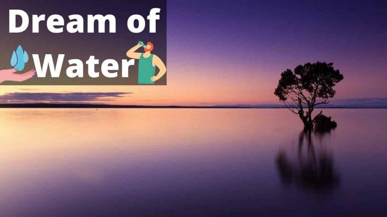Water Dream Meaning Interpretation | Regular Dream