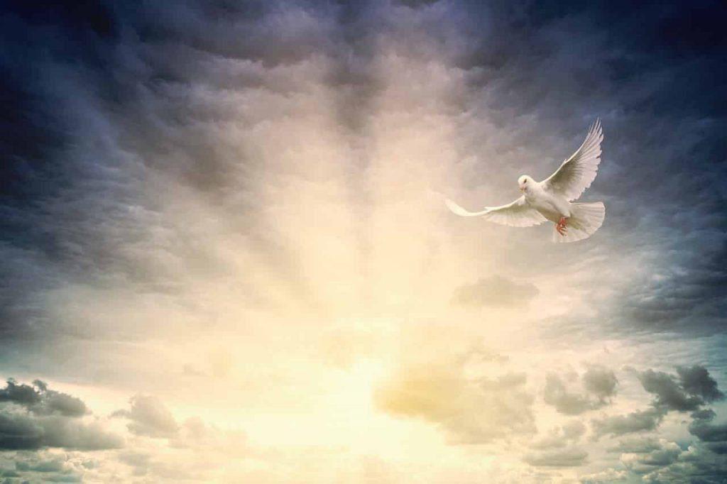 After-Death Communication The 6 Qualities of a Spirit Visitation Dream - Regular Dream