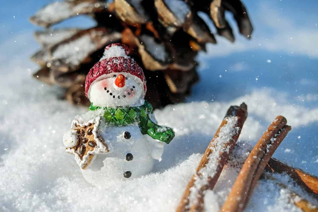 DREAMING OF SNOW - Meaning and interpretation
