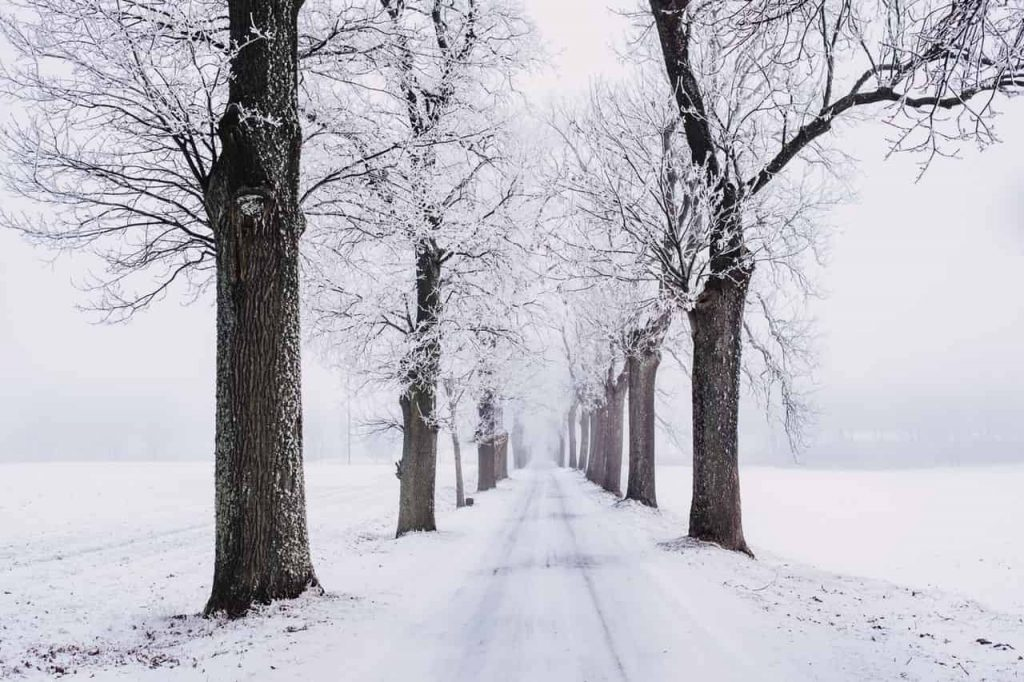 Snow Dream Meaning - What Does It Mean Spiritually To Dream About Snow?