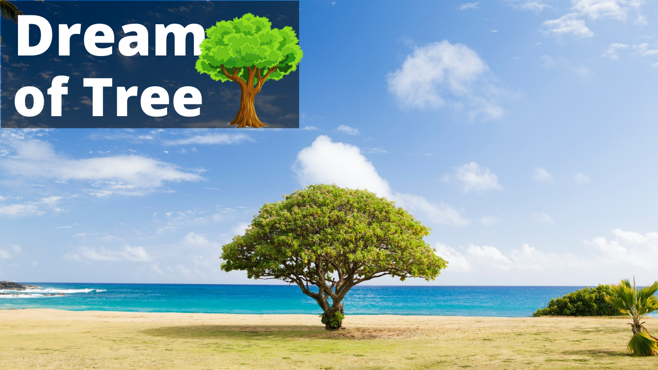 Biblical Meaning of Trees in Dreams – Interpretation and Meaning