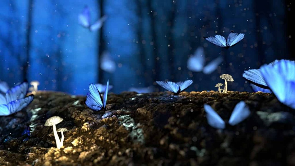 Butterflies In Dreams- What's The Hidden Spiritual Meaning?
