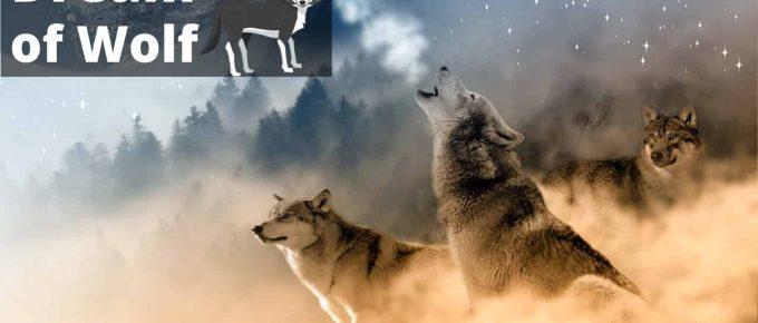 DREAM INTERPRETATION -Changing old habits [symbols -wolves, handgun, hut, light] | Regular Dream