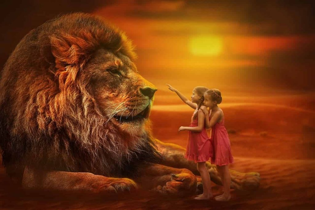 The Dream of a Talking Lion & Interconnected Stories