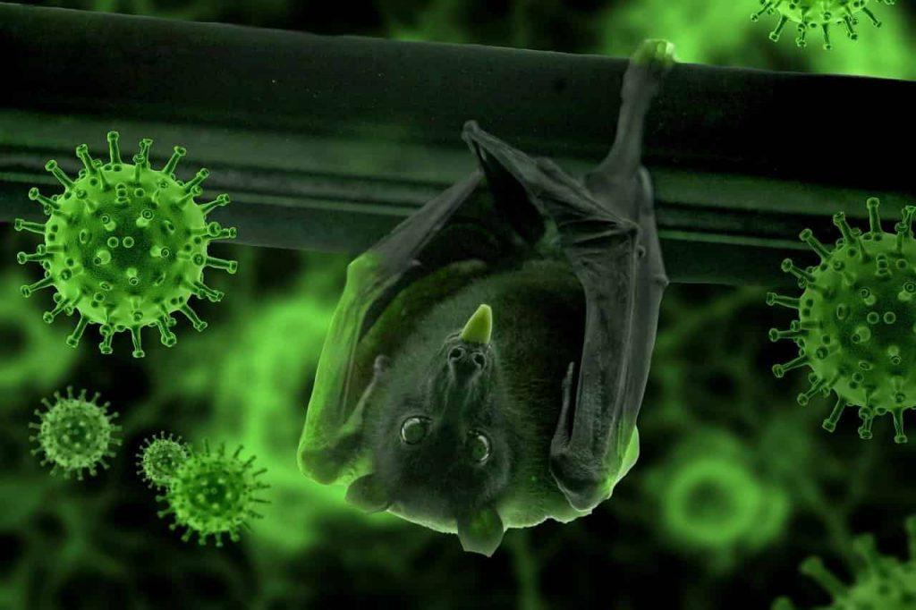 The meaning behind your strange coronavirus dreams - Regular Dream