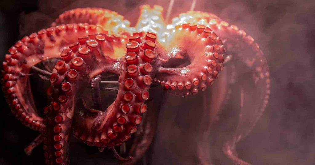 What dream about Octopus means - Symbolizm and meaning