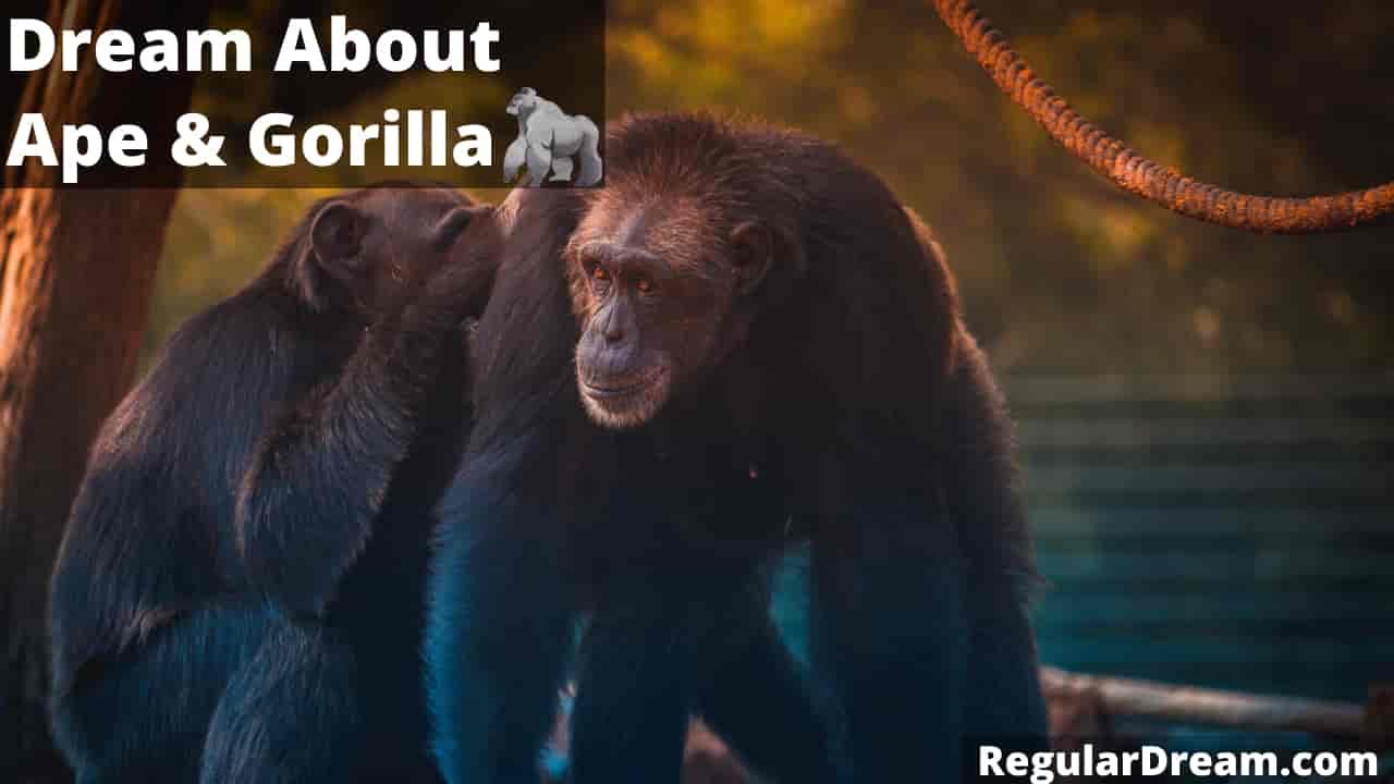 Ape or Gorilla Dream - Meaning, Interpretation & Symbolism