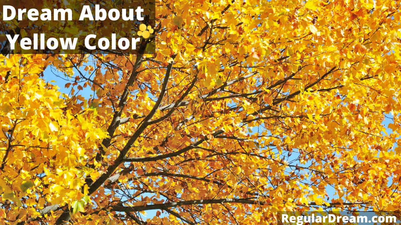 Dream About Yellow Color - Meaning and Interpretation