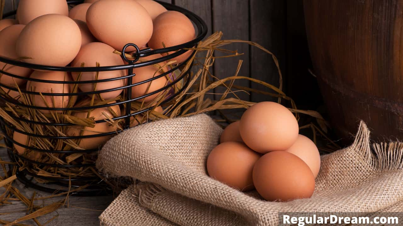 What does it mean to dream about eggs - Egg in dream
