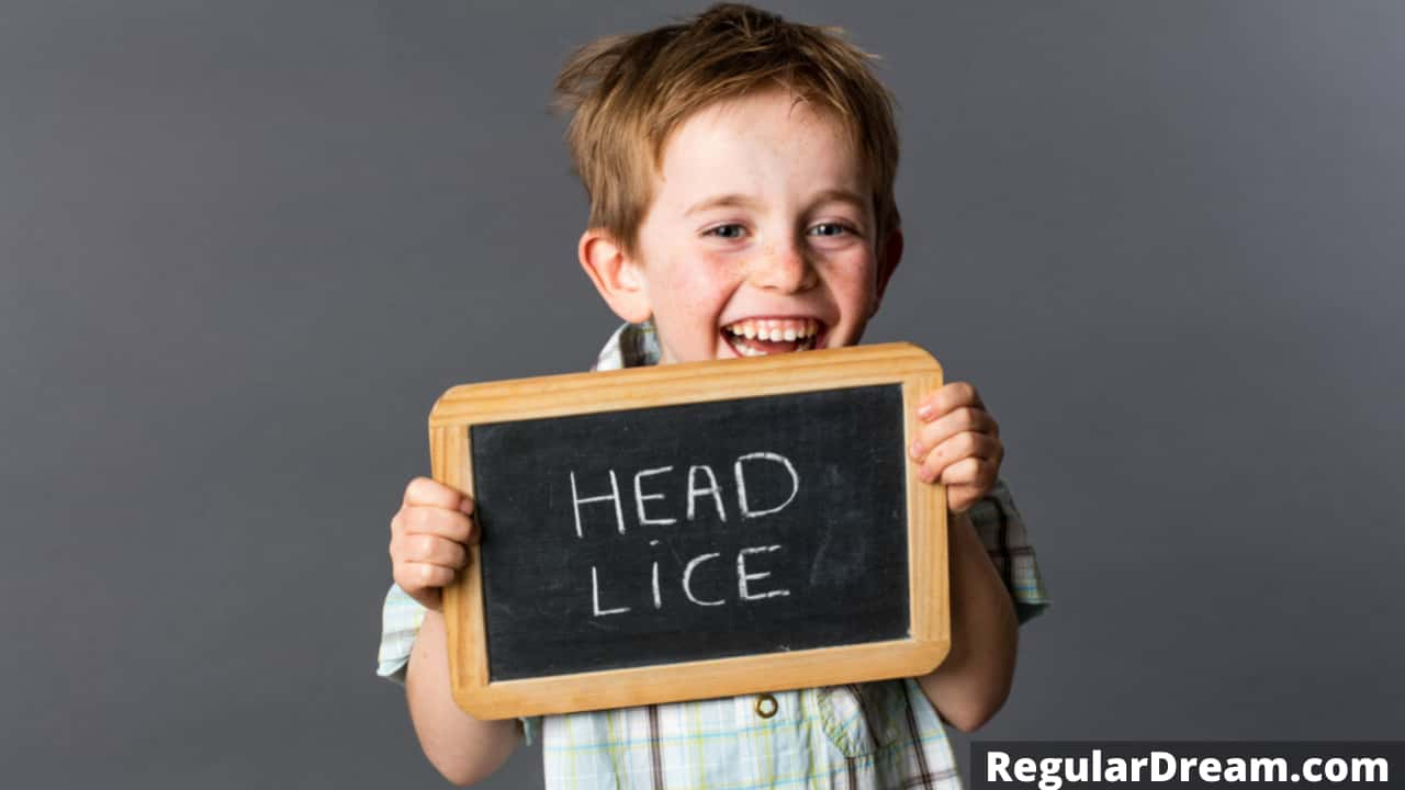 What does it mean to dream about head lice